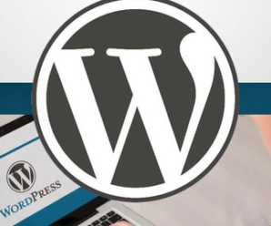 2019 WordPress 5.0 Gutenberg With A Twist