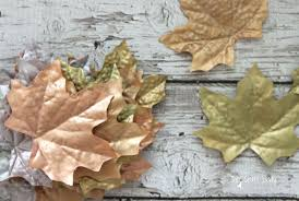 How to store fall leaves?