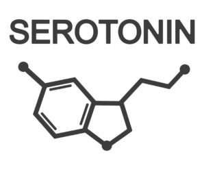 How to know the Serotonin in the Body?