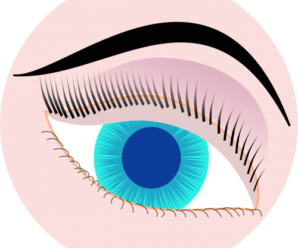 How to take care of Eye Health?