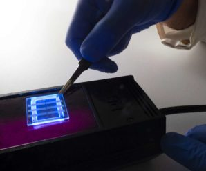 In Australia, hair is recycled to create flexible Oled screens